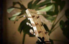 о гитаре