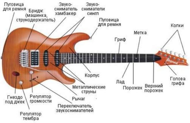 Бас-гитара предназначена для игры в басовом диапазоне. Бас-гитара