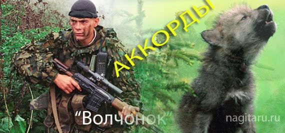 Волчонок - Армейская - Аккорды